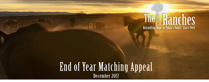 End of Year Matching Appeal 2017