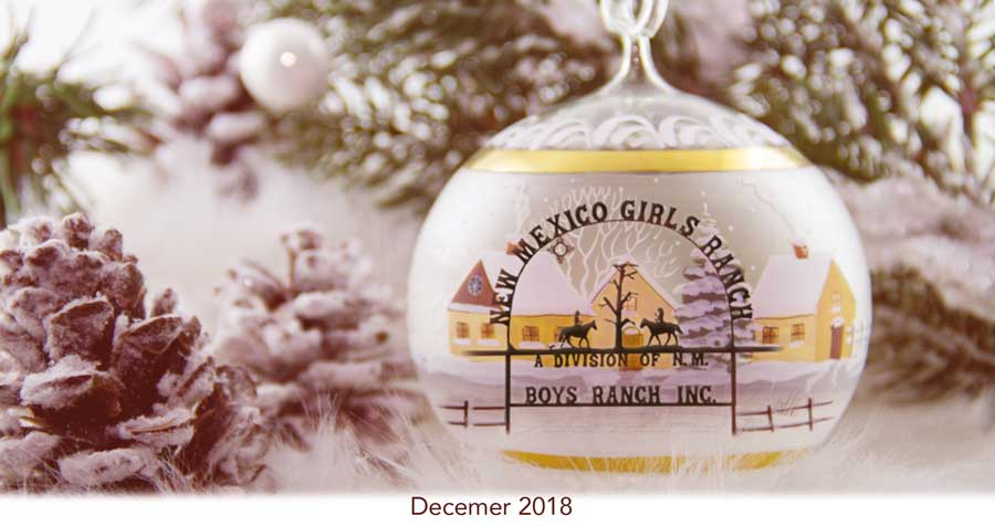 Christmas Appeal 2018 - The Ranches