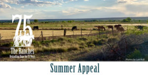 Summer Appeal 2019-The Ranches