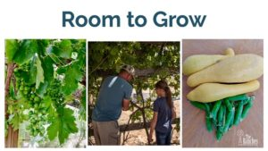 Giving the Kids the Room to Grow